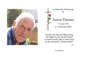 Anton Trauner